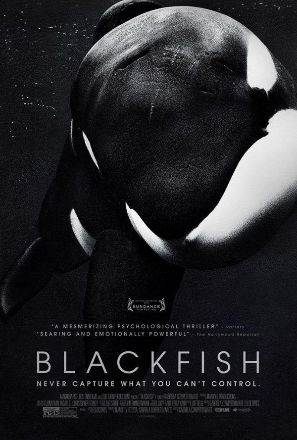 blackfish-02