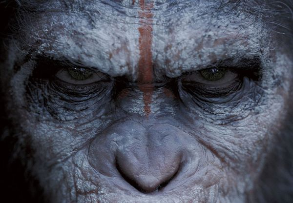 First Trailer for 'Dawn of the Planet of the Apes' has Arrived