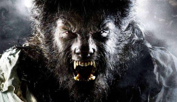 NBC Plans 'The Wolfman' TV Series