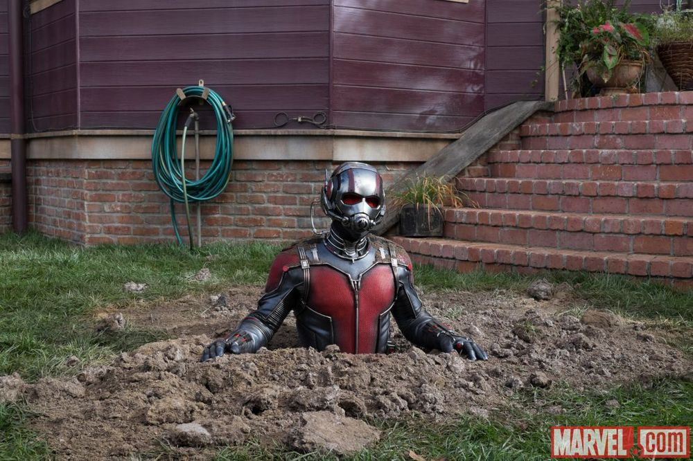 Marvel Releases 10 Official New Ant-Man Movie Images
